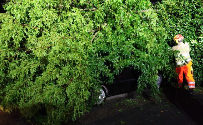 boom op auto 3